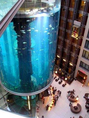 largest_aquarium_2.jpg